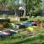 Urban Gardens 2